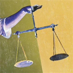 26th Annual Criminal Justice Institute The Flip Side: Compromise in a Challenging World